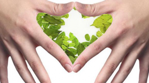 Dietética, Nutrición, y Seguridad Alimentaria